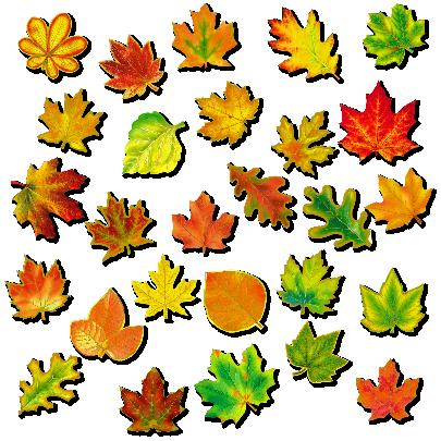картинки из осенних листьев