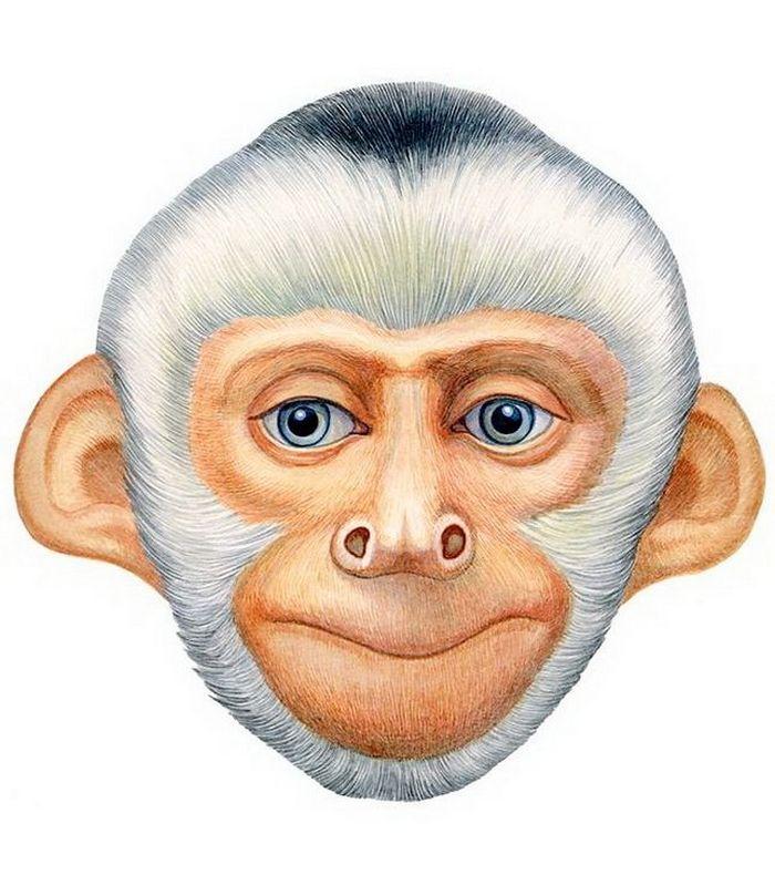 Маска обезьяны на новый год