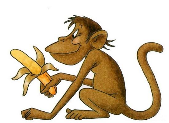 загадка про обезьяну
