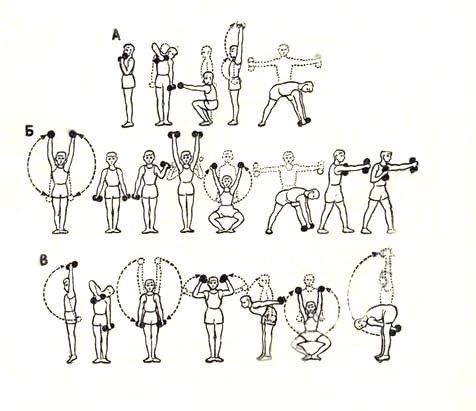 комплексы упражнений с гантелями в картинках заряженные